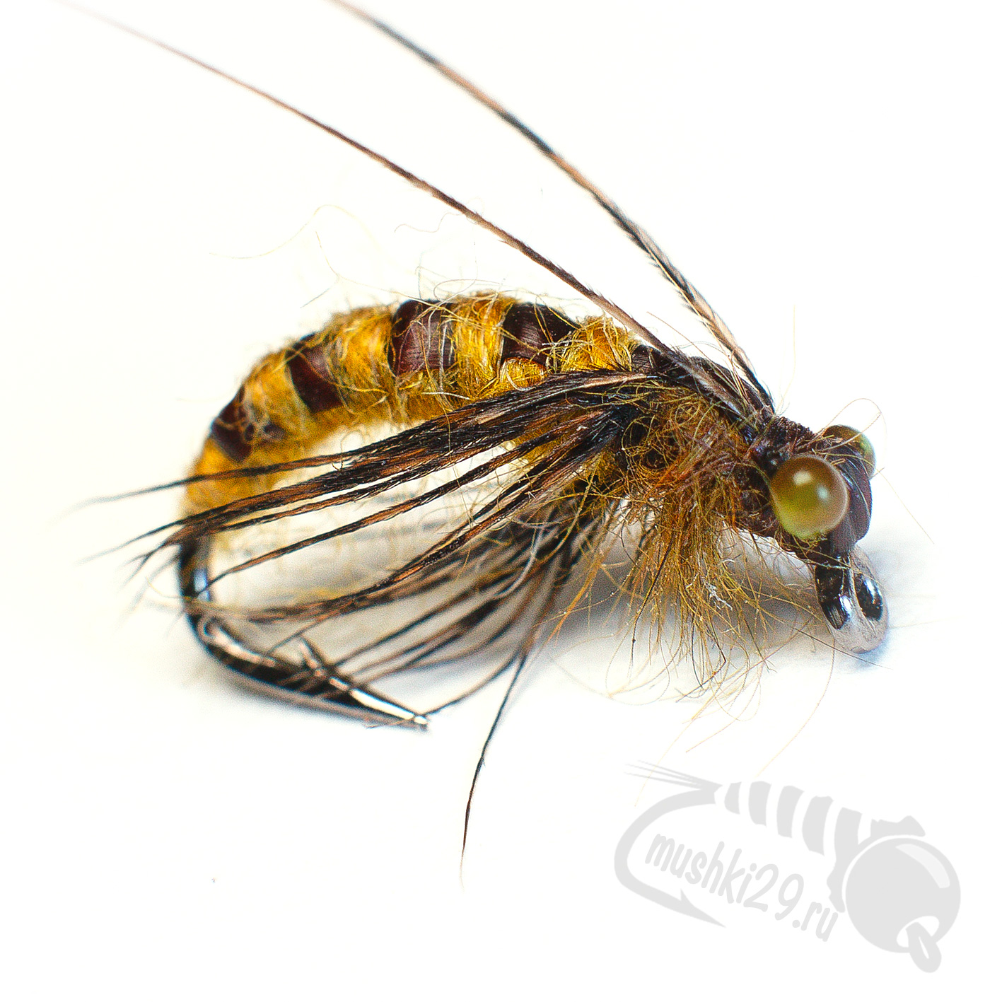 Caddis Pupa (Real)