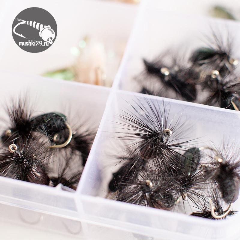 Trump beetles (v. Black & brown)