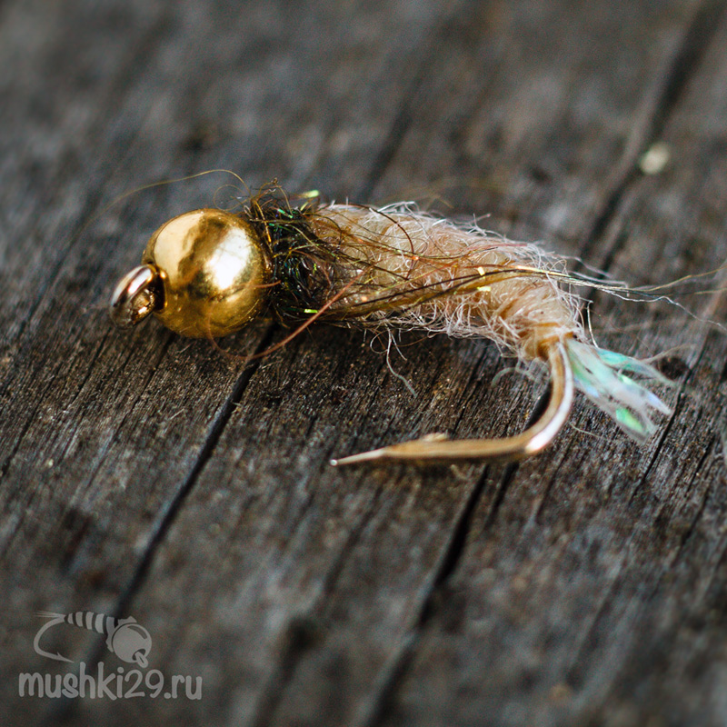 Golden Caddis (brilliant tail)