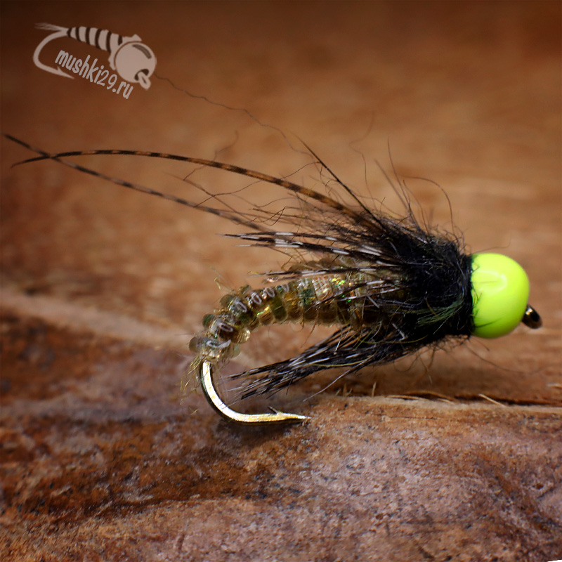 Caddis Pupa Nymph