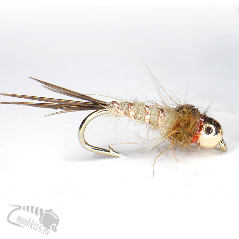 Pheasant Tail  Red Nymph