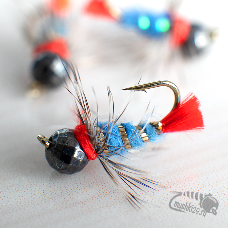 Blue and gold nymph (red pile)